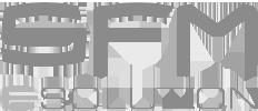 Logo SFM eSolution